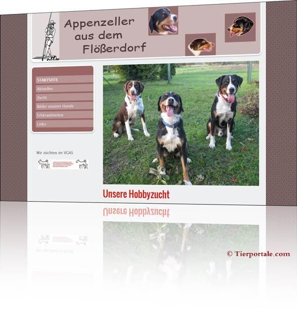 Appenzeller Sennenhunde aus dem Flösserdorf
