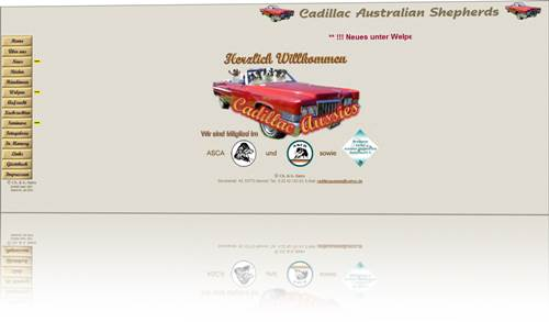 Cadillac Australian Shepherds