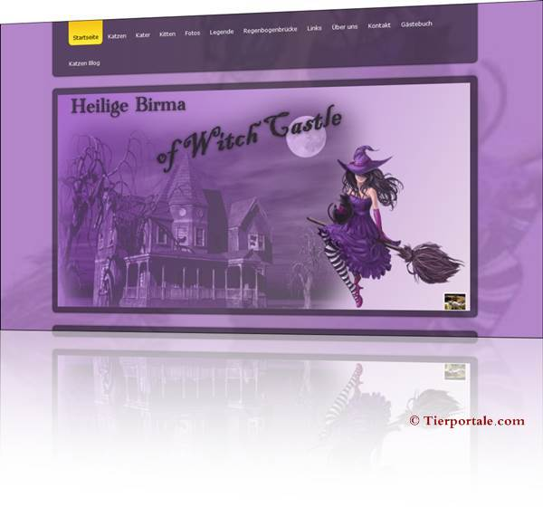 Heilige Birma of Witch Castle