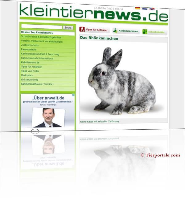 Kaninchen kleintiernews - das Onlinemagazin