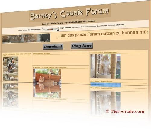 Barneys Coonie Portal