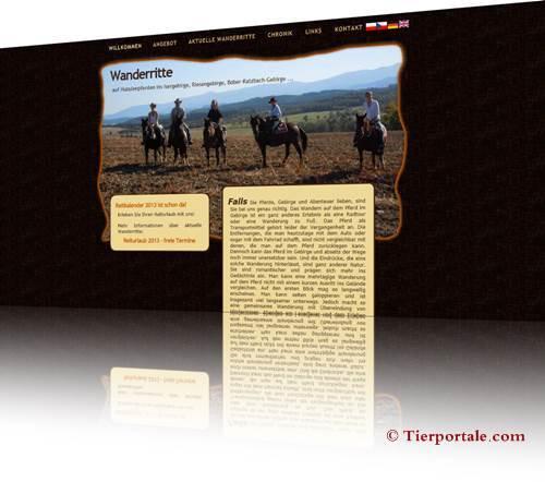 Huzule-Pferde  Züchter Polen