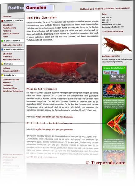 Red Fire Garnlen: Infos zu Pflege und Zucht